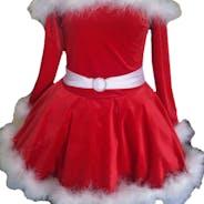 Red Winter Fur